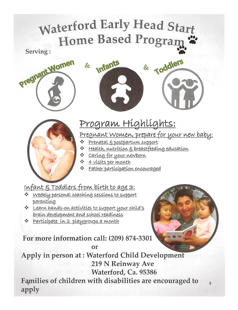 application flyer